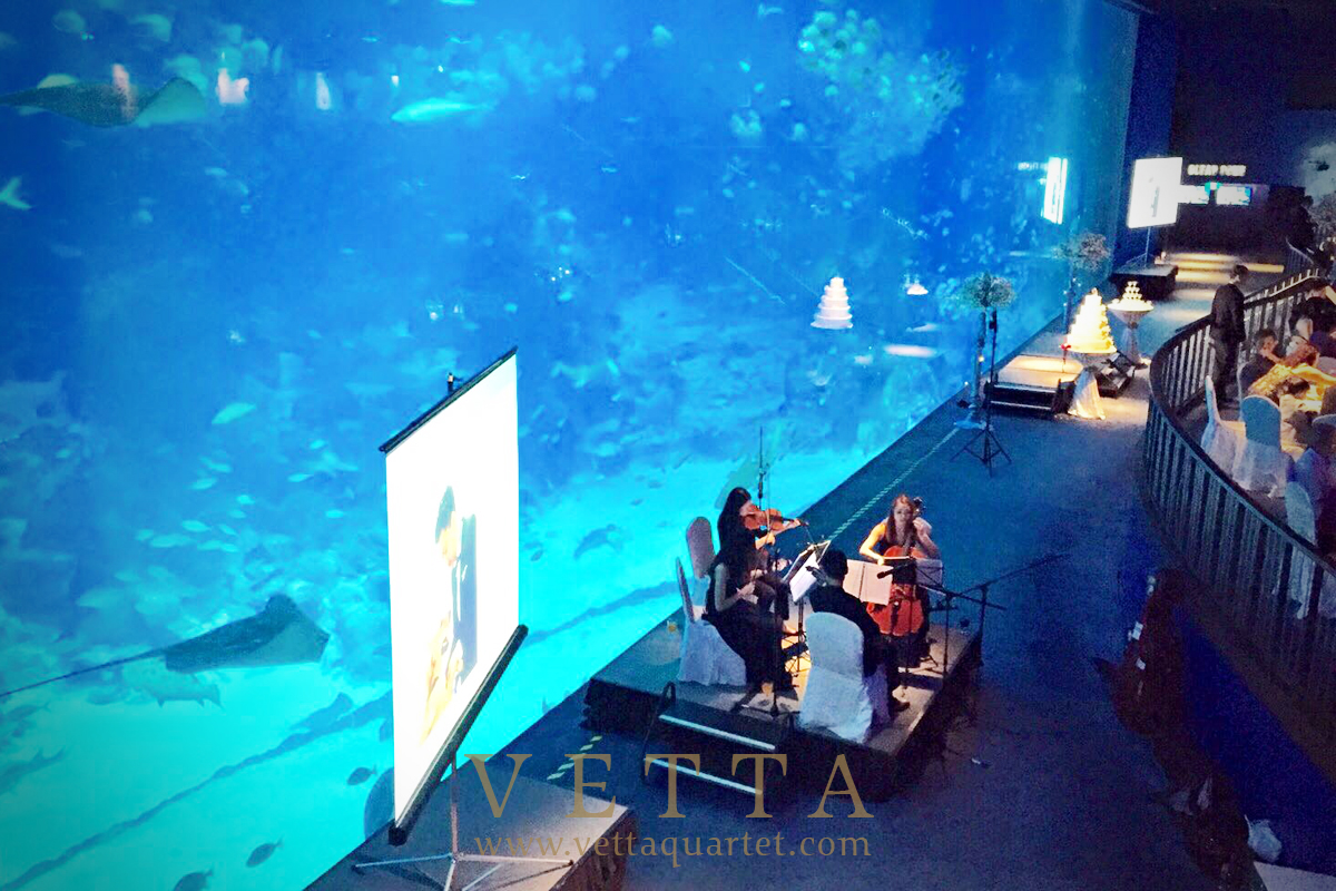 Wedding at SEA Aquarium