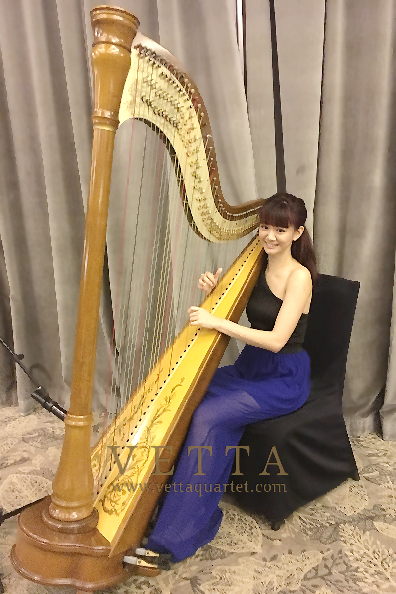 Solo Harpist for Corporate Event at Goodwood Park Hotel