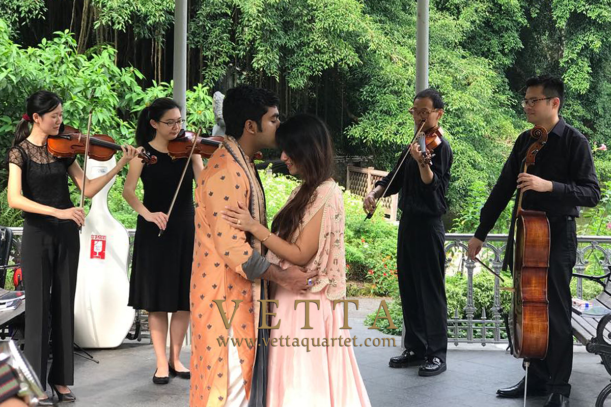 String Quartet for wedding proposal at Botanic Gardens,  Gazebo at Swan Lake